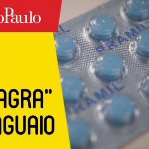 """O """"Viagra"""" paraguaio"""